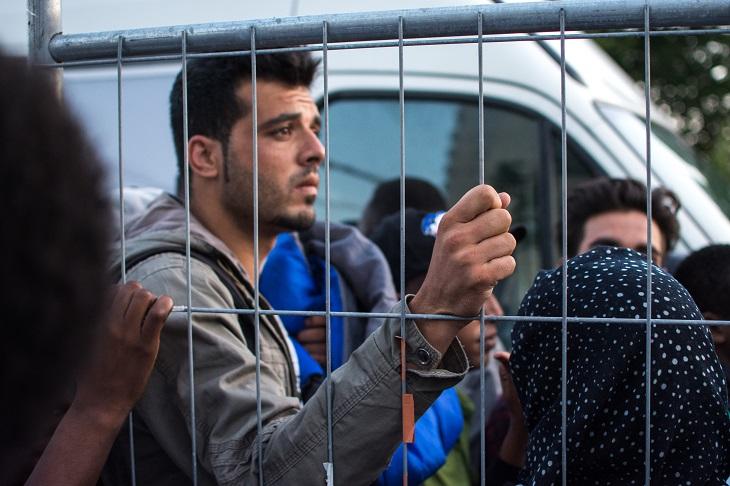 3refugees