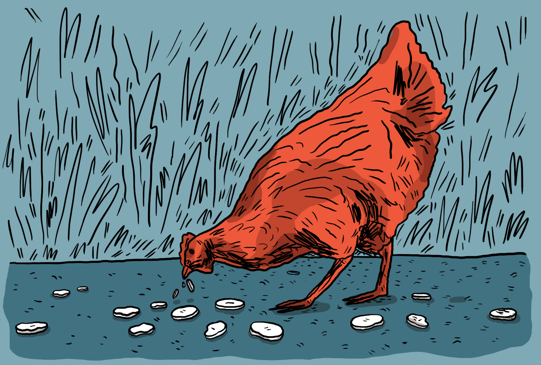 https://www.streetpress.com/sites/default/files/illustration-la-poule.jpg
