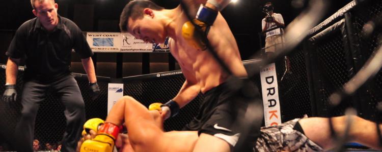 Le conseil d'Etat maintient l'interdiction des compétitions de MMA en France