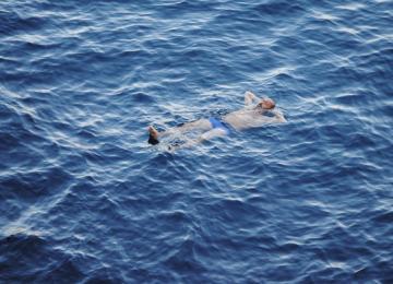 La légende des plongeurs marseillais
