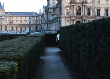 Dans les buissons des « jardins gay » du Louvre