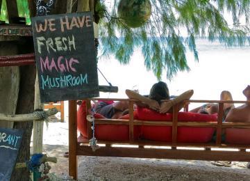 Mes vacances dans une  narco-destination (2/2)